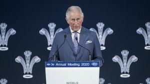 Printul Charles: La ce bun toata averea din lume, daca nu puteti face nimic cu ea, decat sa vedeti cum arde in conditii catastrofale?