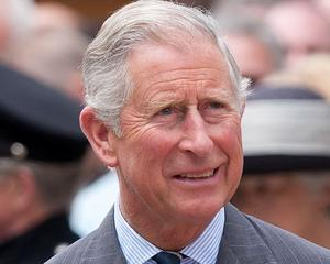 Rovana Plumb: Printul Charles ne ajuta sa promovam Muntii Carpati