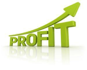 Care este cea mai profitabila companie a statului