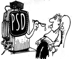 PSD - paine si circ