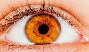 Google vrea sa foloseasca inteligenta artificiala pentru a examina retina utilizatorilor