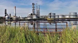 Companiile petroliere incearca sa aiba tot mai multa grija fata de mediu
