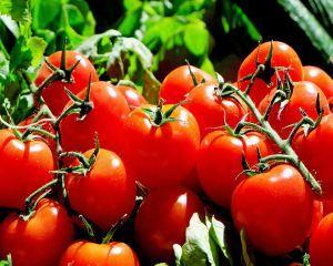 Primele rosii romanesti au ajuns in piete si hypermarket-uri