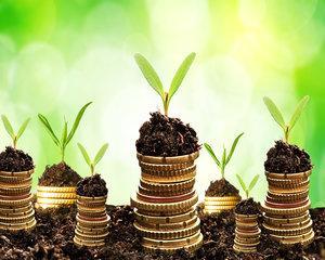 Un nou program de credite pentru investitii in agricultura. 15 banci sunt interesate sa adere la noua conventie