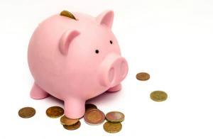 Ministrul Muncii: Salariul minim pe economie se va majora din 1 decembrie si va fi diferentiat in functie de studii