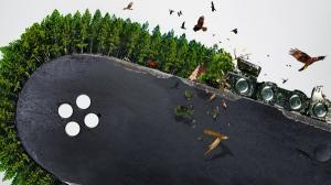 WWF vrea sa salveze 700.000 de hectare de paduri valoroase din Romania