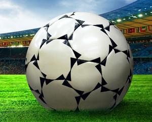 SAP si succesul fotbalului german: Low a inclus BIG DATA in echipa
