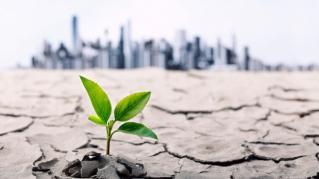 Schimbarile climatice ne pot afecta direct portofelul si viata: analiza care nu te va mai lasa indiferent acestui fenomen