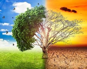 Savantii au gasit o idee controversata pentru a opri schimbarea climatica  Ce efecte secundare poate avea