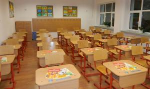 Ministerul Educatiei inchide vineri toate scolile din tara din cauza gripei