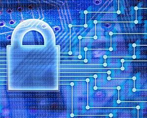 Proiect pilot impotriva criminalitatii informatice internationale, lansat de UE