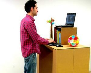 ANALIZA: Despre sefii de carton si angajatii lor