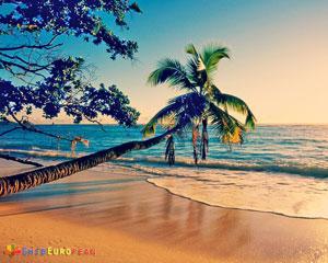 Insule de vis in Oceanul indian: Seychelles