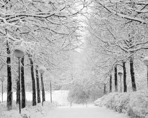 Masuri de protectie sociala in perioada sezonului rece