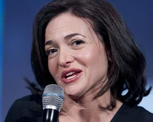 Facebook vrea sa ii atraga pe micii intreprinzatori