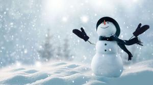Snow how de Romania