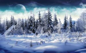 Solstitiu de iarna 2018: Inceperea iernii astronomice