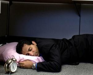 Sefii ar trebui sa-i lase pe angajati sa doarma la locul de munca