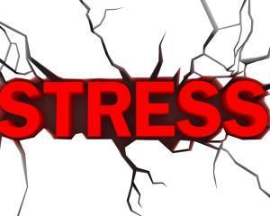 """Reactia la stres"", principala cauza a bolilor"