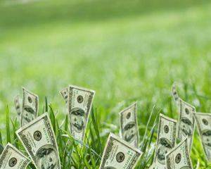 MADR: Peste 134 de milioane de euro au ajuns in conturile fermierilor