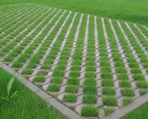 Studiu: Cererea pentru pavelele ecologice s-a dublat in ultimii doi ani