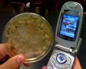 """Tenerarca, telefonul celular """"verde"""" care tine microbii la distanta"""