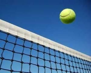De profesie jucator/jucatoare de tenis