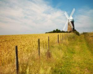 Impozitul pe terenuri agricole 2015. Ce prevede noul Cod Fiscal