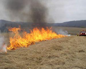 APIA: Este interzisa arderea miristilor si a resturilor vegetale pe terenul arabil