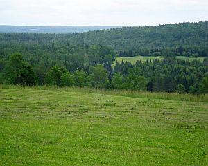 Ce solutie are MADR pentru solurile degradate din Romania