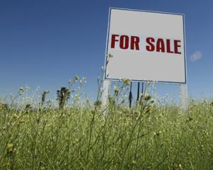 iTerenuri.ro, site-ul pe care consulti, analizezi, vinzi si cumperi terenuri