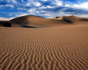 Terra ia foc! Temperatura globala va creste cu patru grade pana in 2100