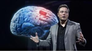 Compania lui Elon Mask  si-ar fi testat produsele pe animale
