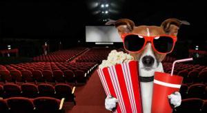 Top 10 filme de dragoste care nu trebuie ratate in weekend