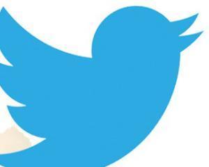 Cate conturi-fantoma are Twitter