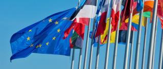 Unii istorici de calibru considera ca Uniunea Europeana n-ar fi trebuit infiintata