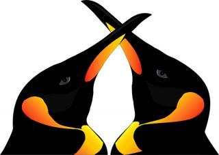 Vaccinul anticovid a ajuns in tara lui rasu-plansu intr-o duba branduita cu doua capete de pinguin