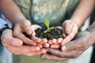 Cum putem trai o viata mai verde, prin mici pasi facuti chiar la noi acasa