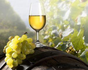 Productia de vin a Romaniei a scazut cu 20%