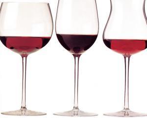 Cum sa iti pastrezi vinul in conditii optime