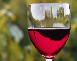 Via si Vinul, intre traditie si modernitate