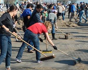 Proiect de lege: Voluntariatul, recunoscut ca experienta profesionala