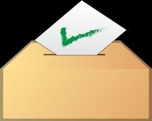 Cum pot vota rezidentii din strainatate la alegerile parlamentare din acest an