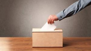 Tinerii au adus o participare record alegerilor europene din acest an