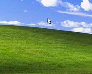 Windows XP ramane un