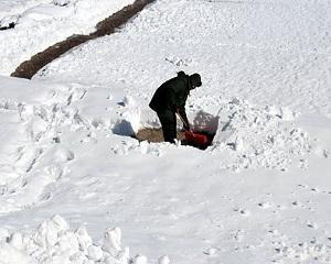 Ne imbolnavim si murim mai mult iarna ?