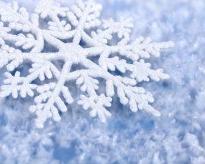 Directorul ANM saluta venirea iernii: Stratul de zapada va proteja culturile agricole