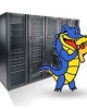 Web hosting si domenii