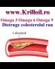 Tratament trigliceride si colesterol