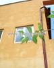 GLX060812  Inchiriere - Casa / Vila - 4 camere Vatra Luminoasa
